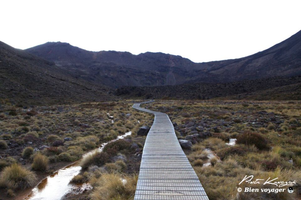 Tongario trek Nouvelle-Zelande