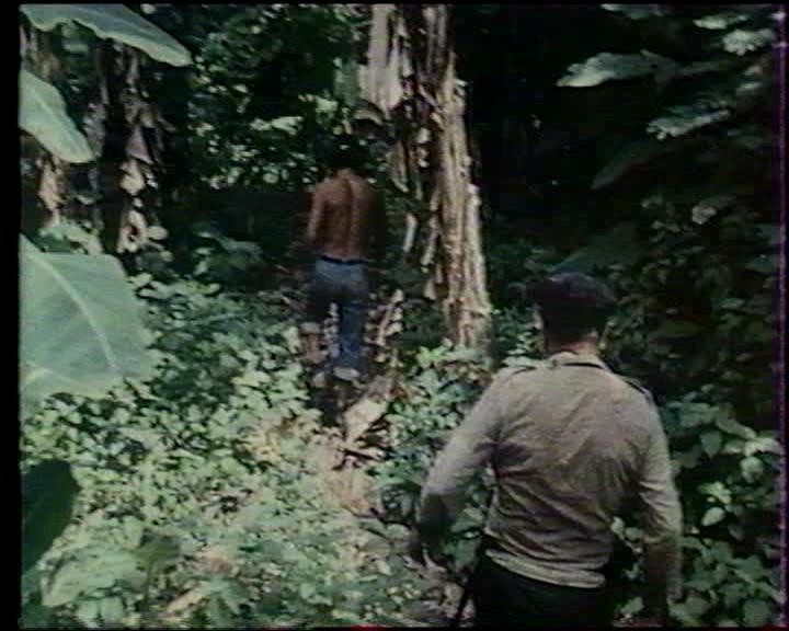 « La dernière île au trésor », un récit d'aventures de Robert Vergnes