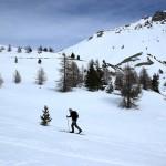 En ski de randonnée nordique dans les Alpes du Sud
