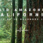 Boot Camp Raid Amazones